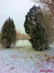 Зима 5